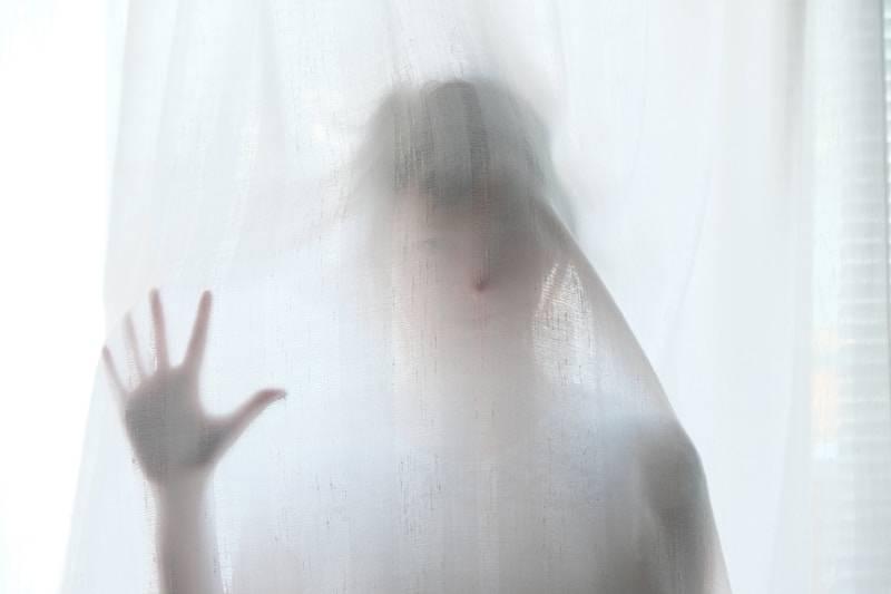 Le fantôme en nous